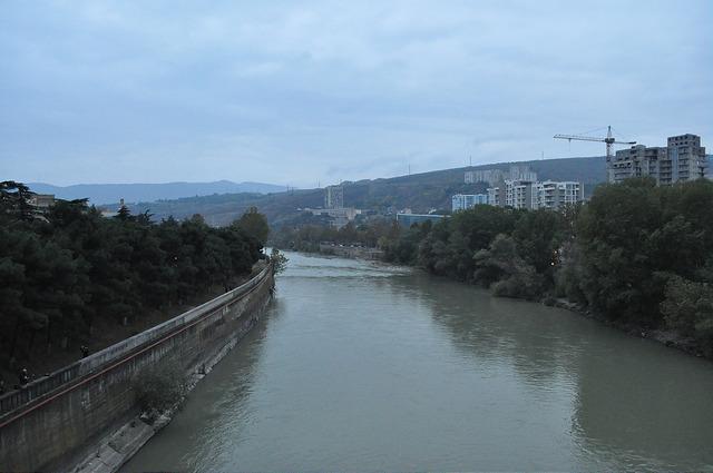 Кура с Дидубийского моста