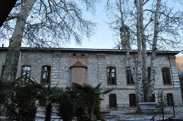 Мечеть Имам Али, Шеки