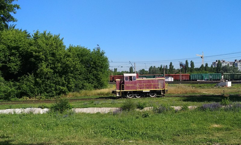 ТГМ23Д 48-171 на станции Елец