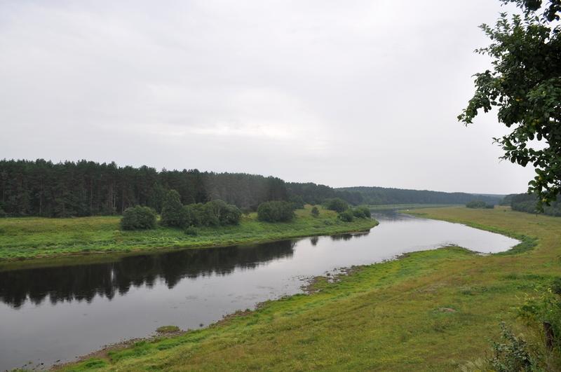 Волга в Родне
