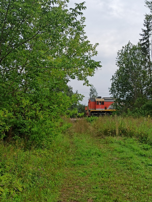 Поезд в Щербово
