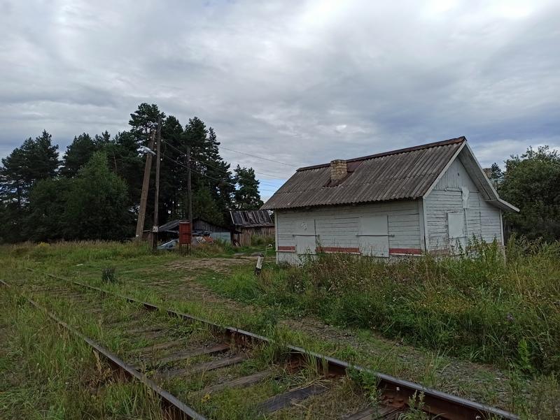 Станция Доронинская